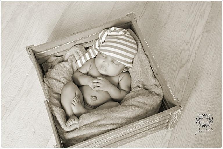 newborn photography0033